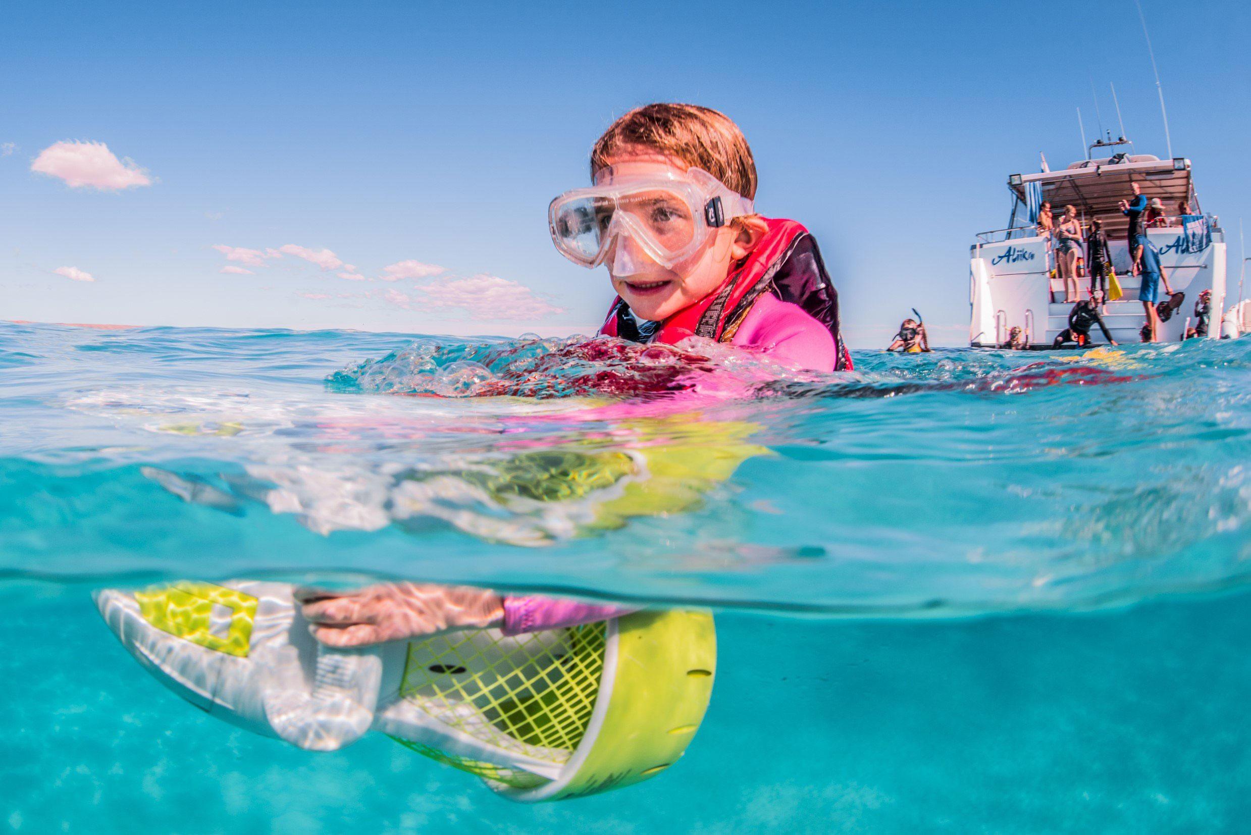 HERON-whale-shark-swim-girl-child-in-water
