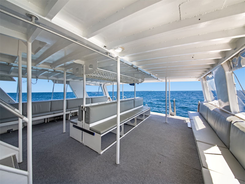 BLUE DESTINY back lower deck for dive boat charters