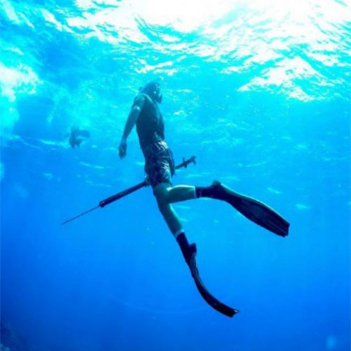 BLUE WATER CHARTERS spearfishing